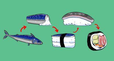 橫跨兩千年的圖解壽司史
