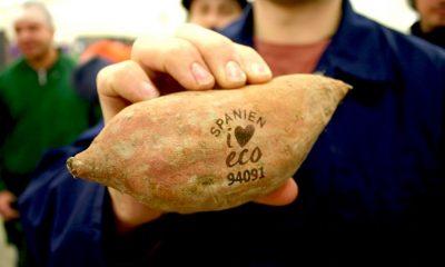 荷蘭新嘗試:以雷射取代蔬果貼紙標示