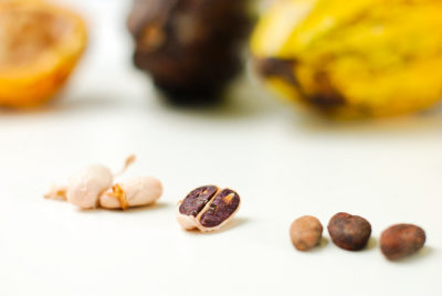 關於可可:Cacao 跟 Cocoa 差在哪?