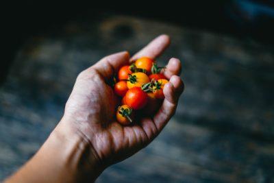 可鹹可甜的番茄烹調妙招,紐約餐廳 Gramercy Tavern 分享