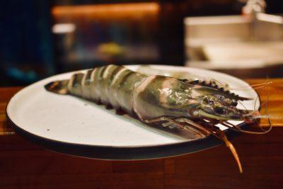 來自台灣南部的鮮甜「肥豬仔」:海草蝦